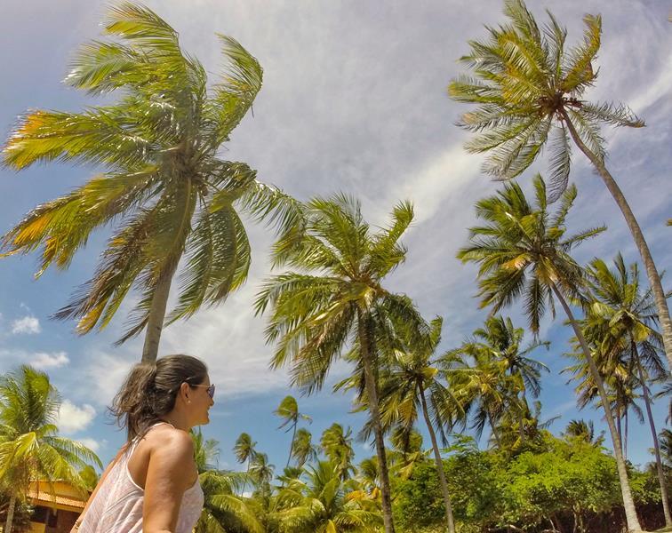 cote sud coqueiros