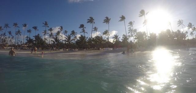 praia de punta cana com coqueiros ao fundo