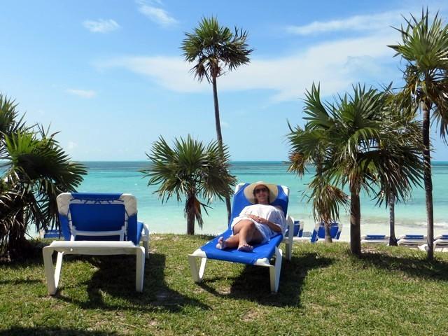 mar azul turquesa, espreguiçadeiras, árvores e grama