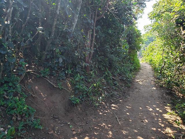 entrada para a trilha