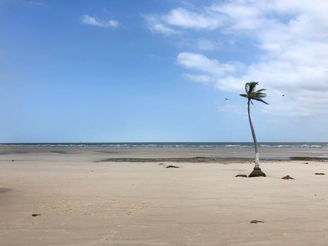 Praia do Pesqueiro Marajo