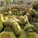 Jardim do Nego Nova Friburgo