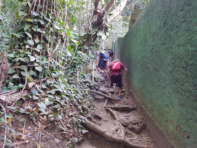 Inicio da trilha para a enseada do Bananal