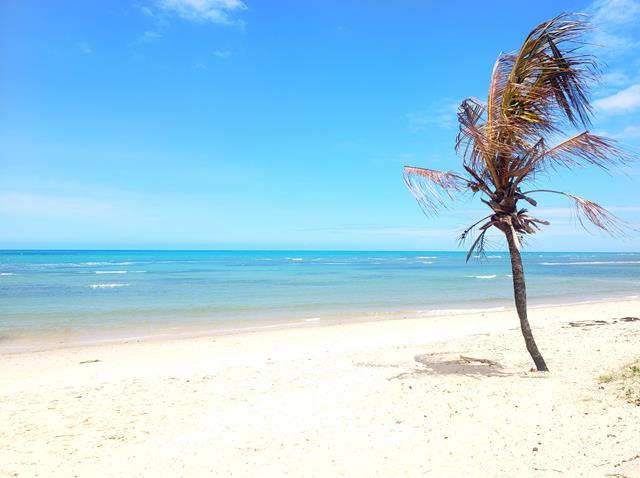 Melhores praias de Arraial da Ajuda